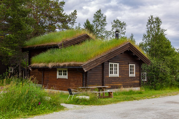 Tradtionial wooden eco cabins and green roof with moss and plants in Norway