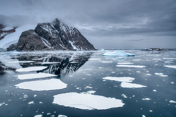 Canvas Prints Antarctica Breaking ice floe near arctic shores
