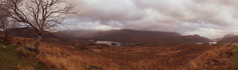 In de dag Diepbruine Lady's View - Killarney National Park - Kerry