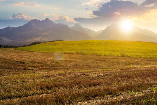 rural landscape of slovakia in summer at sunset. empty wheat field in august. high tatras mountain ridge in the distance in evening light. sunny weather with clouds on the sky