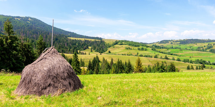 haystack on the grassy field in summer. traditional carpathian rural landscape in mountains. sunny weather with fluffy clouds