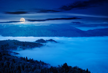 mountainous countryside at night. valley full of rising fog in full moon light. green foliage on trees. wonderful nature scenery in springtime