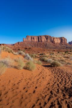 Einsamer Weg durch die Wüste im südwesten der USA