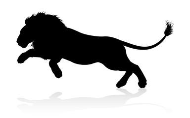 A male lion safari animal in silhouette