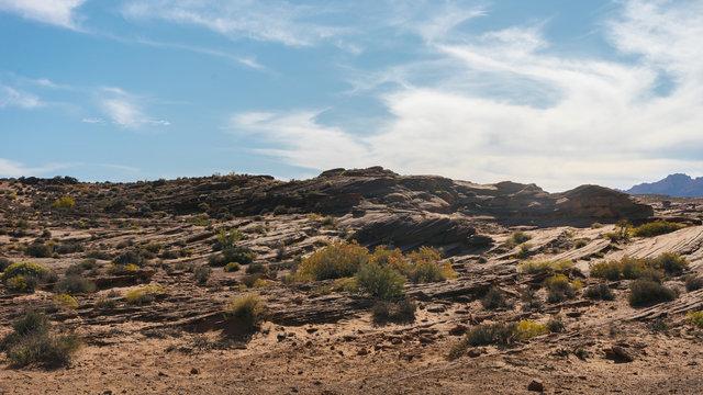 Steinige Ebene während einer Wanderung im südwesten der USA