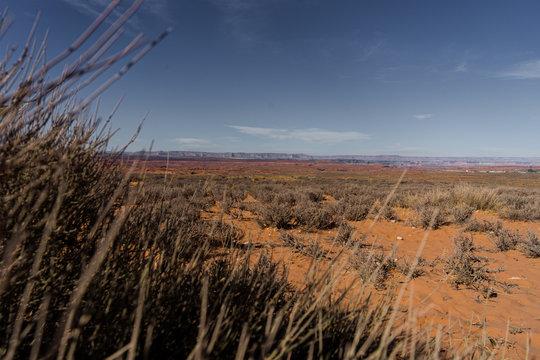 Einsame Steppe im süwesten der USA