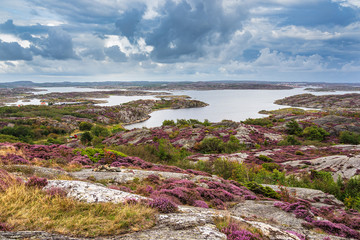 Fototapete - Landschaft auf der Insel Tjörn in Schweden