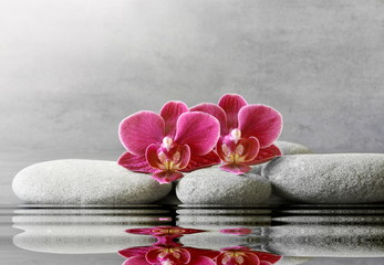 Spa stones and orchid flower on the grey background