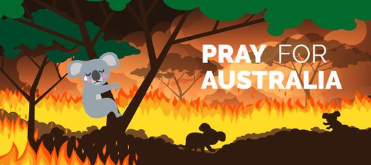 pray for australia banner forest in fire burning bushfire . save koala bears