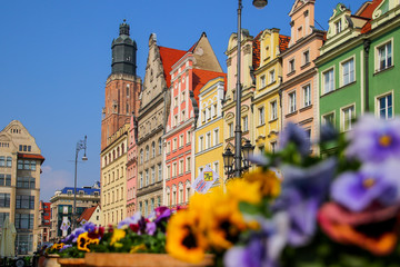 Papiers peints Con. Antique St. Elizabeth's Church tower overlooking some colorful buildings on Wroclaw's market square in Poland with a flower bed in the foreground