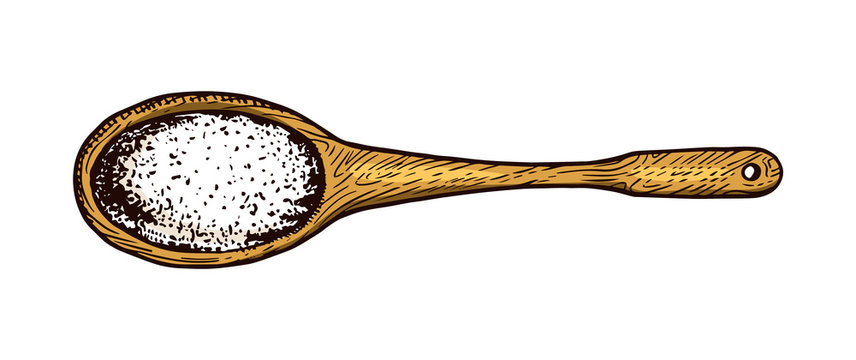 Wooden spoon with Sea salt. Powdered powder and bunch of seeds. Vintage background poster. Engraved hand drawn sketch.