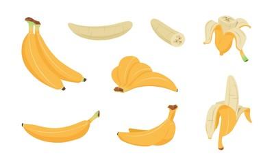 Bananas set. Cartoon logo collection of yellow banana peel, single and peeled tropical fruit, flat simple clip art of banana snack. Vector set illustration bunch healthy tasty vegetarians food