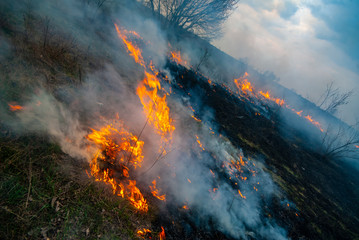 Dry grass burns in the steppe in early spring.