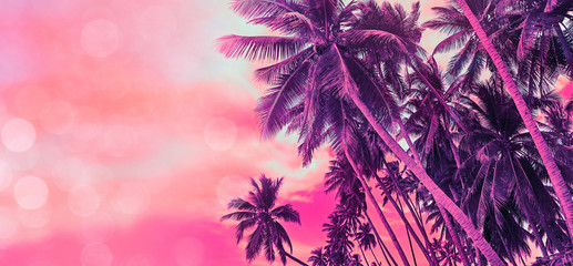Tropical coconut palm trees on the ocean beach during sunset. Vintage stylized image