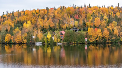 House in the forest on the lake in Canada, in autumn, beautiful colors of the trees, reflection on the water
