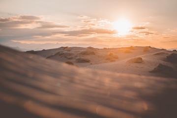 Poster Cappuccino Hermosa vista del paisaje del atardecer en las dunas de Bilbao en Coahuila, México
