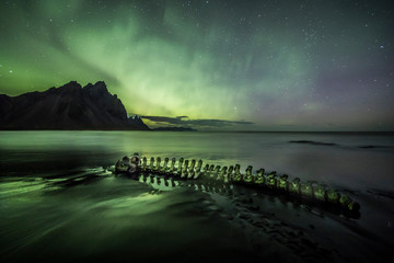 Wall Mural - Skeleton of a beached whale under an Aurora Borealis (Northern Lights)