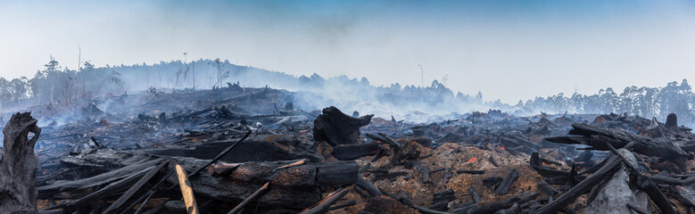 Photo sur Aluminium Pays d Europe Bushfire smouldering in Australian Outback