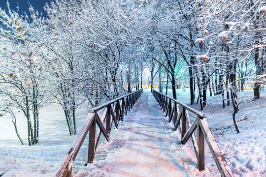 wooden bridge in a snowy park in the evening