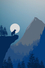 Foto op Canvas Nachtblauw Landscape of a wolf on a cliff in the mountian landscape