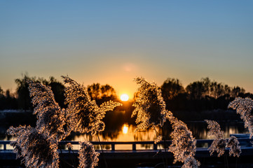 Foto auf Acrylglas Braun Sunset Landscape of Changchun Beihu National Wetland Park, China