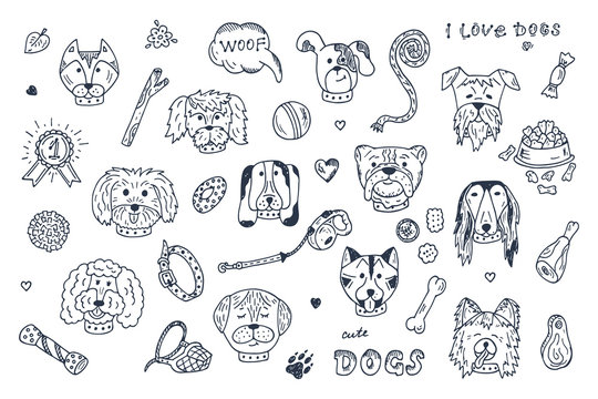 Dogs Vector Set. Dogs faces icons. Hand Drawn Doodles Dogs and accessories for pets