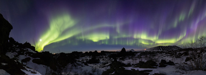 Wall Mural - Northern lights above an arctic landscape