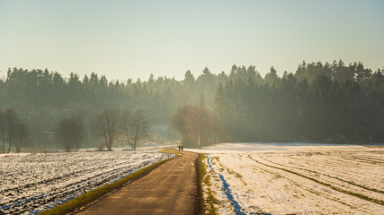 Rural landscape. Road through fields leading to forest in winter. Hazy frosty day background.