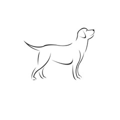 Vector Dog Head Black and White Logo, Sign, Design. symbol. Mammals. Illustrator. on white background