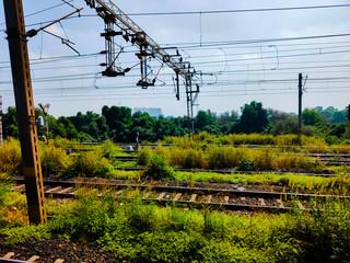Mumbai local railway track with green grass