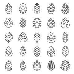 Pine cone botanical icons set. Outline set of pine cone botanical vector icons for web design isolated on white background