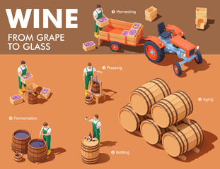 Vector isometric wine making process. Wine makers on grapes harvesting on vineyard, crushing and pressing grapes, aging and bottling. Winery production process steps illustration