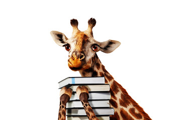 Happy giraffe with stack of books close view,