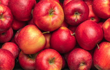 Wall Mural - close-up view of ripe red apples