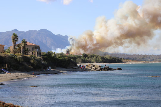 INCENDIES FEU DE FORET CORSE FRANCE