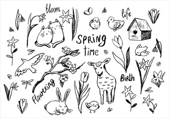 Collection of hand drawn vector illustration. Large set of spring theme contour doodles. Cute animals, spring flowers, birds and handwritten words. Outline elements isolated in white for your design.