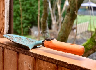 gardening tools in garden shed