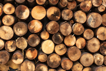 Round split logs piled in rows wood texture.