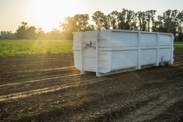 Container for roll-off skip loader at potatoes field