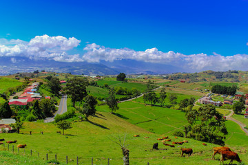 Beautiful rural landscape. Field, street, houses and livestock, a typical scenery in Costa Rica. Cartago, Costa Rica.