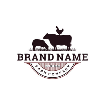 vintage livestock logo design, vector concept illustration