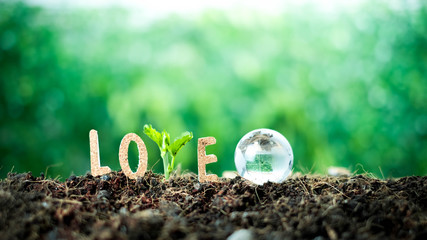 Text and trees make up the word love And the glass globe over blurred green background. For Valentines Day greeting card. Typography design for print cards, banner, poster.The love of the environment Wall mural