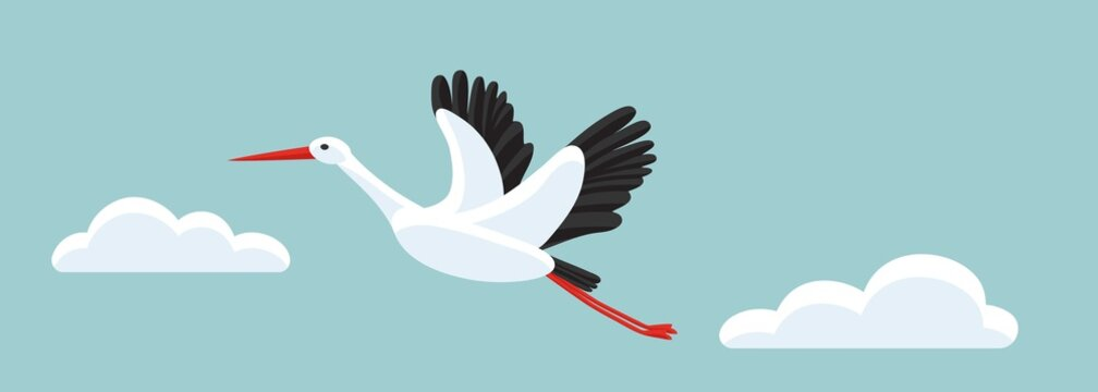 White stork flying among clouds in the sky. Horizontal banner with a bird as symbol for pregnancy, delivery, news.