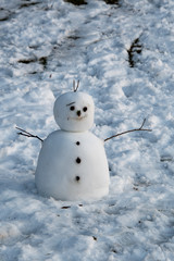 A picture of a snowman on snow-covered ground.     Burnaby Mountain  BC Canada