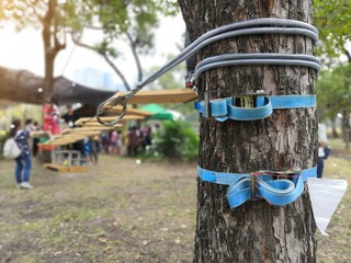 Ratchet tie down strap in blue rope holding sling tied to tree for tree climbing activity.