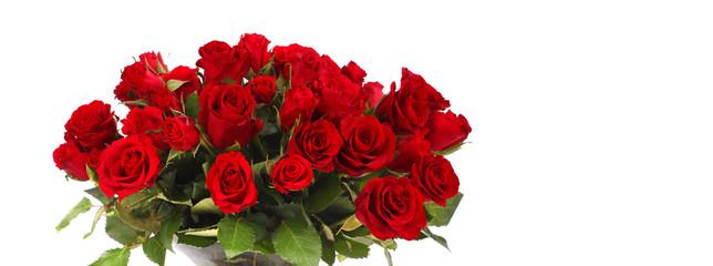 Foto op Aluminium Struisvogel Strauß rote Rosen