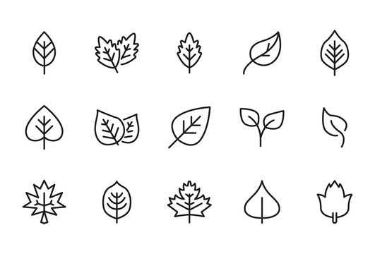 Vector line icons collection of leaf.