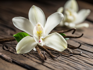 Tuinposter Orchidee Dried vanilla sticks and vanilla orchid on wooden table.