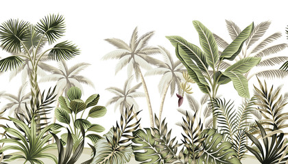 Tropical vintage botanical landscape, palm tree, banana tree, plant floral seamless border white background. Exotic green jungle wallpaper.