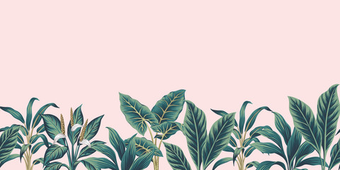 Tropical vintage plants floral botanical seamless border pink background. Exotic jungle wallpaper.